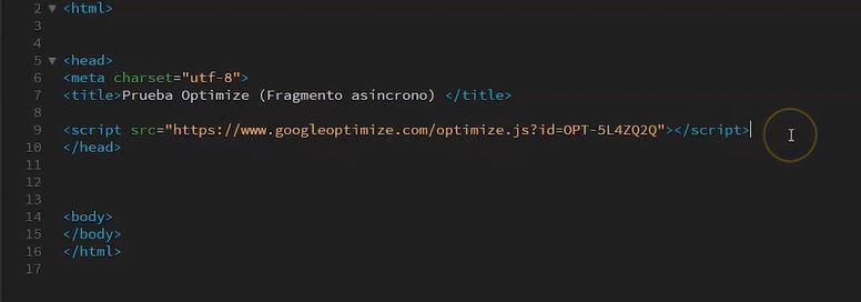 insercion codigo optimize